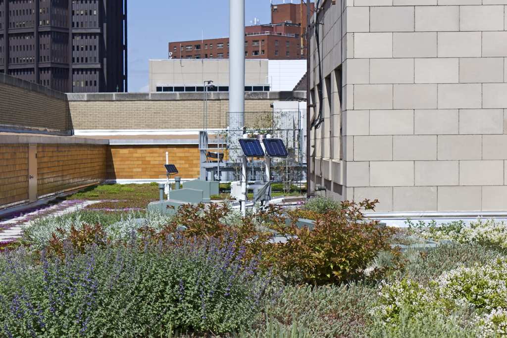 Allegheny County Building Green Roof Pittsburgh Pennsylvania