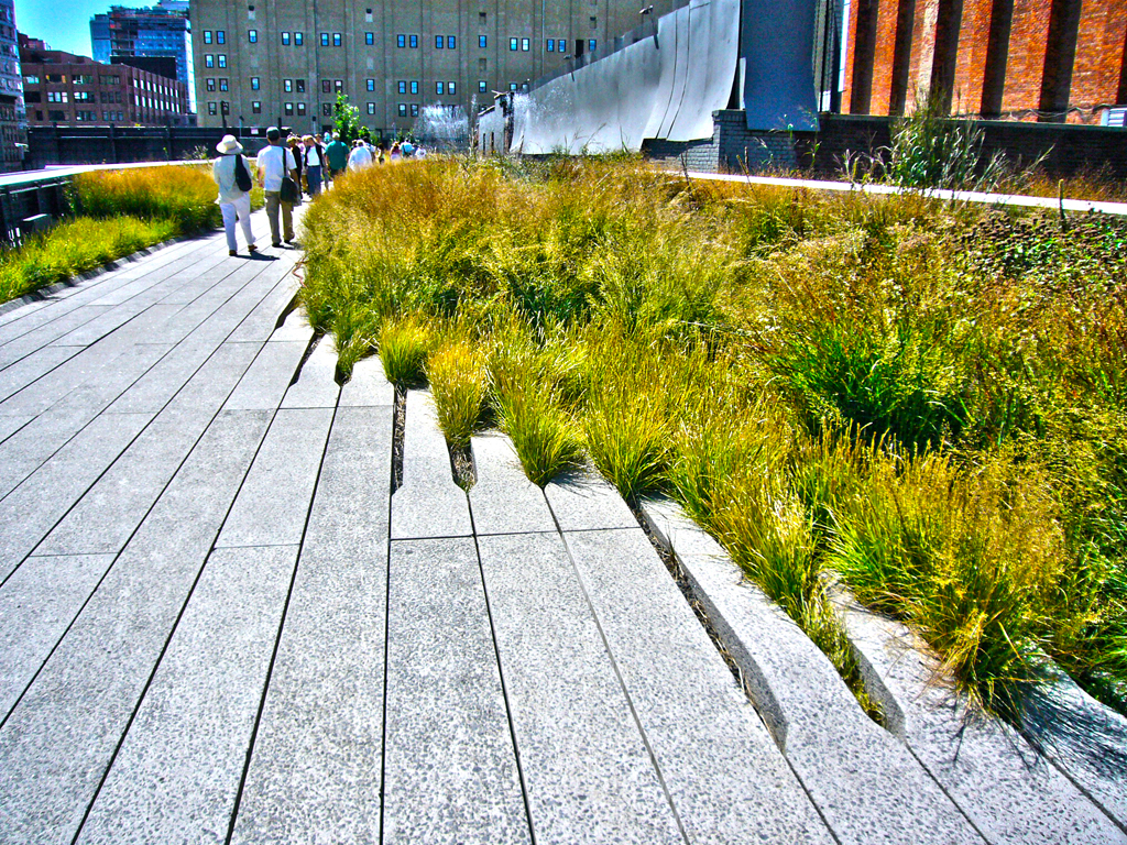 The High Line New York City Civic Arts Project
